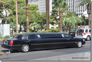 Usa - Nevada - Las Vegas (45)