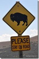 Usa - Utah - Antelope Island (10)_thumb