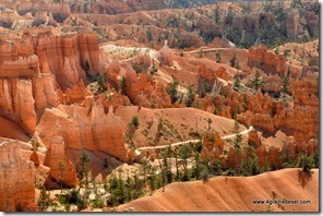 Usa - Utah - Bryce Canyon (15)