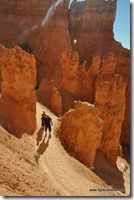 Usa - Utah - Bryce Canyon (17)