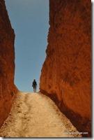 Usa - Utah - Bryce Canyon (29)