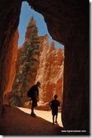 Usa - Utah - Bryce Canyon (35)
