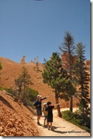 Usa - Utah - Bryce Canyon (41)