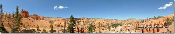 Usa - Utah - Bryce Canyon (42)