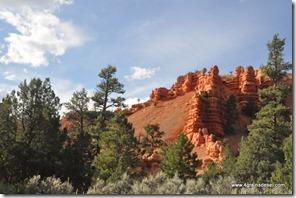 Usa - Utah - Red Canyon (1)
