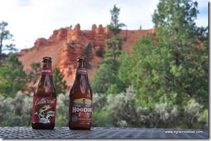 Usa - Utah - Red Canyon (2)