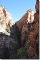 Usa - Utah - Zion National Park (10)