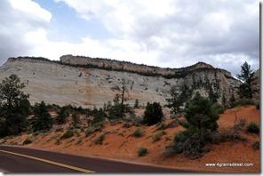 Usa - Utah - Zion National Park (1)