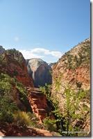 Usa - Utah - Zion National Park (22)