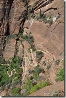 Usa - Utah - Zion National Park (27)