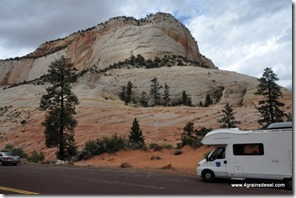 Usa - Utah - Zion National Park (2)